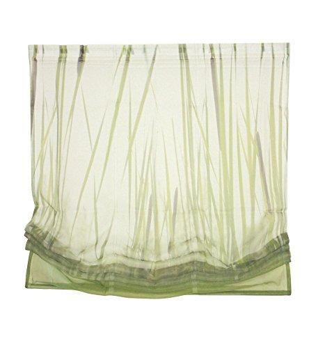Heine Raffrollo 120x140 cm Fenster Rollo Plissee Fertigdeko Faltrollo grün