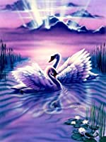5Dダイヤモンドペインティング白鳥ダイヤモンド刺繍動物モザイク画像ラインストーンアーティスト家の装飾40x50cm