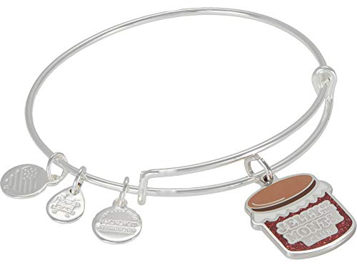 Alex and Ani Christmas Vacation Jelly of The Month Bangle Bracelet Red One Size