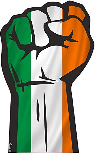 Solidariteit Fist Protest Hand Maart Motief Met Ierland Ierse Vlag Vinyl Auto Sticker Decal 132x82mm