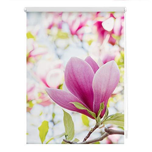 Lichtblick Rollo Klemmfix, 80 x 150 cm mit Motiv Magnolie - Rosa Montage ohne Bohren, moderner Sicht-und Sonnenschutz, Motivrollo, lichtdurchlässig & Blickdicht