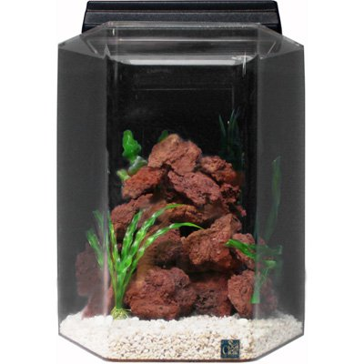 SeaClear 15 gal Deluxe Hexagon Acrylic Aquarium Combo Set, 15 by 15 by 20', Cobalt Blue