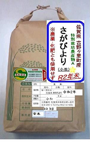 *生活応援!*R2年 佐賀県産(小粒)さがびより(玄米10kg) *農薬不使用、化学肥料不使用です