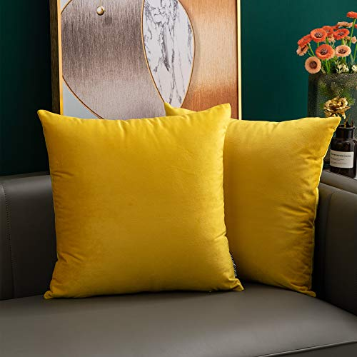 softpoint Velvet Cushion Covers Yellow 40cm x 40cm Soft Decorative Throw Pillowcases 16 x 16inch for Couch, Bed, Sofa, Pack of 2(yellow,16x16)…