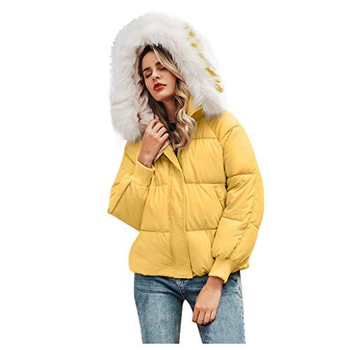 Winterjas voor dames, warm, chique, winterjas, met bontkraag, lange mouwen, voor dames, met rits, chique, grote afmetingen, niet duur en elegant.