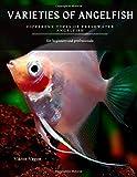 VARIETIES OF ANGELFISH: Different Types of Freshwater Angelfish