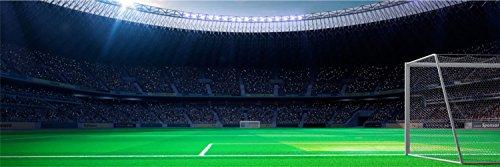 Stadion Fußball Tor Rasen XXL Panorama Wandtattoo Bild Poster Aufkleber W0030 Größe 200 cm x 66 cm