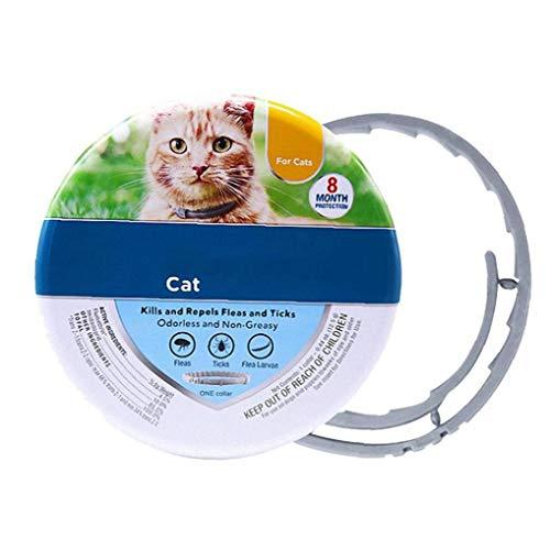 Odoukey Zecken-Floh-Halsbänder für Hunde Katzen, Haustier Floh Zecke Behandlung 8 Monate Schutz Anti Floh Halsbänder, Länge verstellbar für Kätzchen Katzen