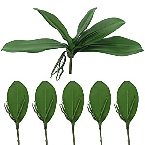 Tinsow Artificial Green Phalaenopsis Simulation Moth Orchid Leaf Real Latex Touch Green Plant for Flowers Garden Bonsai Decor