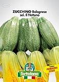 Sementi orticole di qualità l'ortolano in busta termosaldata (160 varietà) (ZUCCHINO BOLOGNESE SEL. NETTUNO)