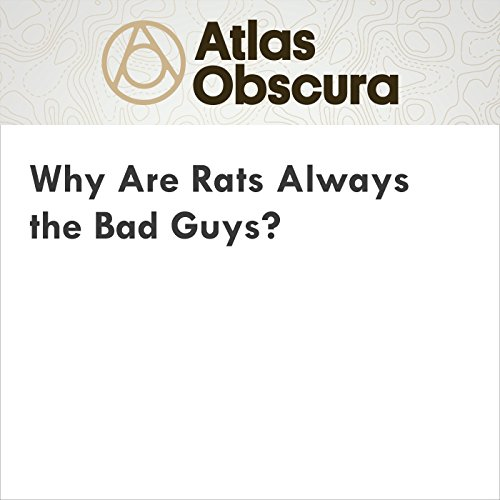 Why Are Rats Always the Bad Guys? audiobook cover art