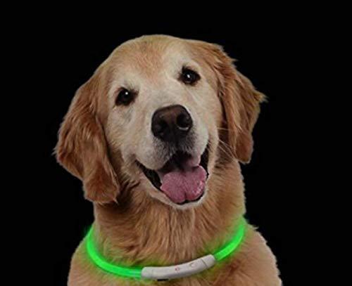 BRIGHTSTAR S-XXL Hunde Leuchthalsband LED Hundehalsband Leuchtband Leuchtschlauch+USB Kabel (Grün)