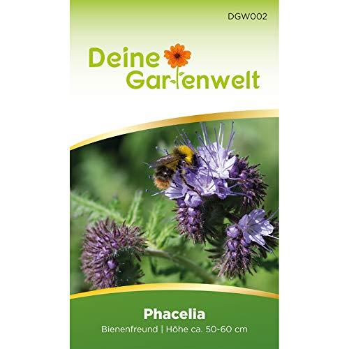 Phacelia Bienenfreund | Blumensamen für Bienen | Gründüngung | Samen für 3 m² | Bienenweide