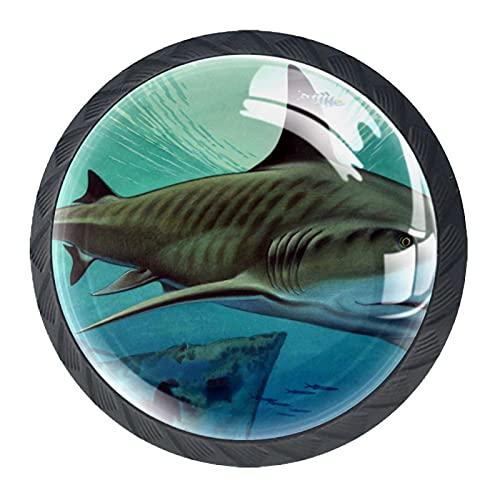Paquete de 4 pomos para gabinetes de cocina con tornillos, perillas de cristal para aparador, cajones, tiradores de gabinete, tiburón y acorazado hundido, 35 mm