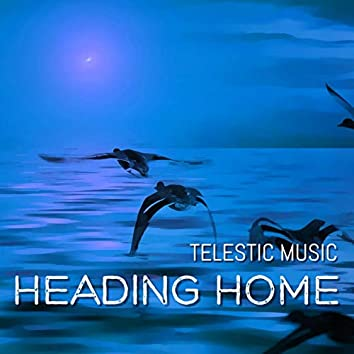 Heading Home (Ardolf Remix)