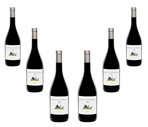 Viñas del Cambrico Villanueva 100% Rufete 2016-Vino Tinto-Ecológico-0.75l. Caja de 6 botellas x 750ml