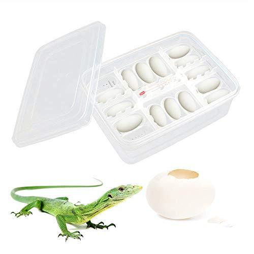 Broodapparatuur, kweekdoos met thermometer, broodtrommel professionele reptielelkweekdoos Lizard Small Climbing Pet Reptilienbroodapparaten voor eieren, voor het brouwen van geckos, eeuwengeleiders