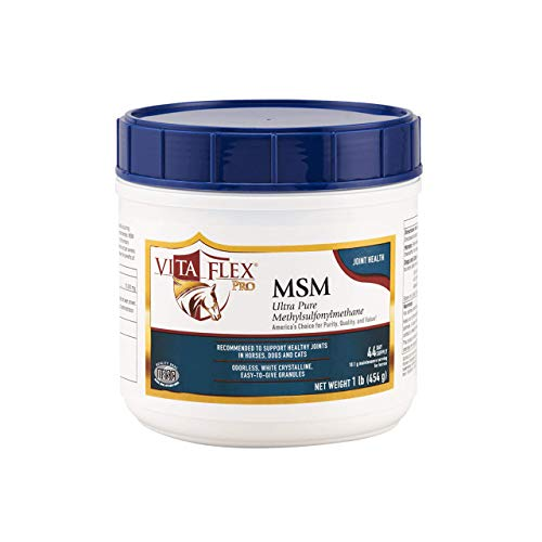 Vita Flex Pro MSM Joint Supplement | Odorless | For Horses, Ponies, Dogs and Cats | 1 lb (3000093)