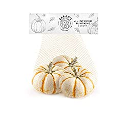 Sarah's Homegrown, Tiger Striped Mini Pumpkins, 3 count