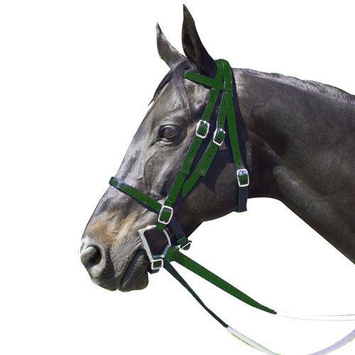 Intrepid International Nylon Race Horse Bridle, Hunter Green