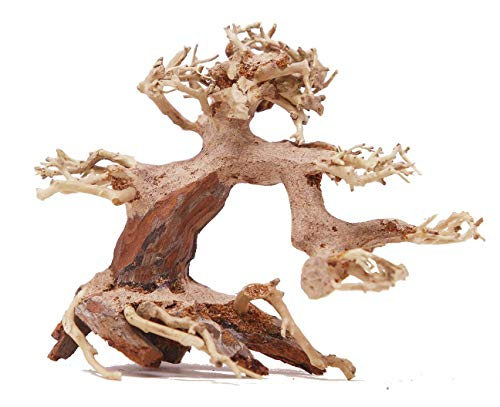 Bonsai Driftwood Small Aquarium Tree ASX Random Pick (4in H x 5in L) Natural, Handcrafted Fish Tank Decoration | Helps Balance Water pH Levels, Stabilizes Environments | Easy to Install