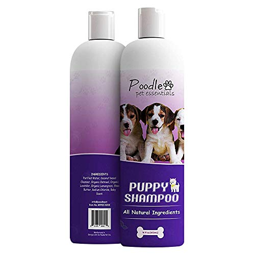 Poodlie All-Natural Gentle Puppy Shampoo - Extra-Sensitive Dog Shampoo for Small Dogs – Fresh Baby...