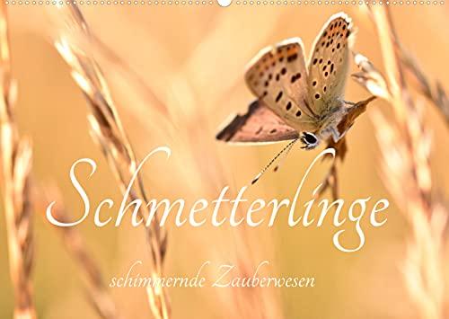Schmetterlinge. Schimmernde Zauberwesen (Wandkalender 2022 DIN A2 quer)