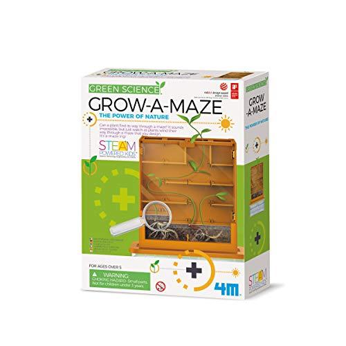 4M- Grow A Maze Ciencia (00-03352)