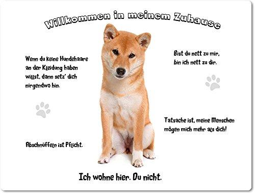 Merchandise for Fans Blechschild/Warnschild/Türschild - Aluminium - 15x20cm - - Willkommen in Meinem Zuhause - Motiv: Shiba Inu - 02