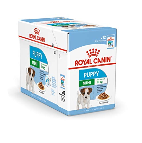 Royal Canin Mini Puppy / Junior Wet Dog Food 24 Pack 85g Each For Young And Growing Small Breed Dogs Up To 10 Months Old