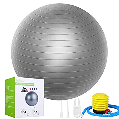 Exercise Balls 65CM Fitness Workout Ball for Yoga, Pilates, Birthing, Balance, Stability Training and Physical Therapy,Home Gym Anti-Burst and Slip Set with Quick Pump for Kids Adult Women Men