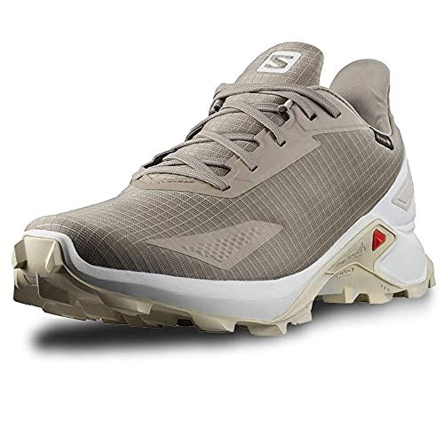 Salomon Alphacross Blast Gore-Tex (impermeable) Hombre Zapatos de trail running, Marrón (Vintage Kaki/White/Lunar Rock), 48 EU