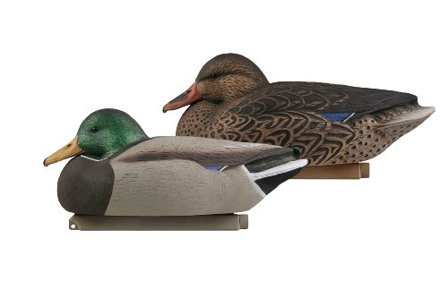 Avery Greenhead Gear Hot Buy Mallards 12 Pack - 70003