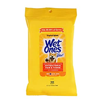 Wet Ones for Pets Paw & Tushie Dog Wipes with Chamomile   Dog Wipes for All Dogs in Tropical Splash Scent Wipes with Wet Lock Seal   30 Ct Pouch Dog Paw Wipes