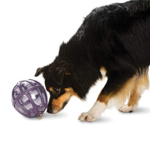 PetSafe Busy Buddy Kibble Nibble - Dog Toy - Treat and Food Dispenser - Slow Feeder