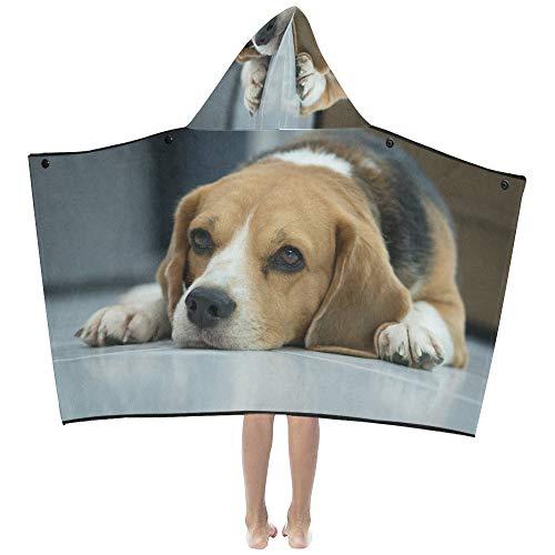 Mantas para niños Lindo perro Beagle yace en el piso Manta con capucha para niños Toallas de baño Envoltura para niños pequeños Niño Niña Niño Viaje en casa Dormir Toallas de baño Extra grande