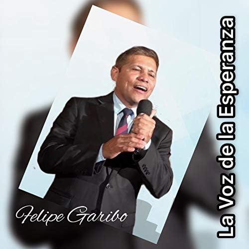 Felipe Garibo