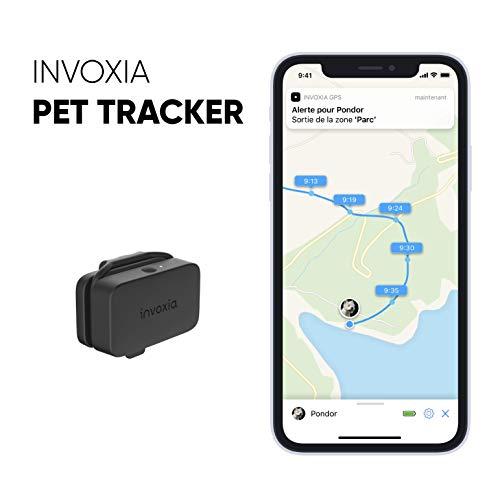 Localizzatore GPS per Cani e Gatti - Abbonamento Incluso - Lunga autonomia - Piccolo e Leggero