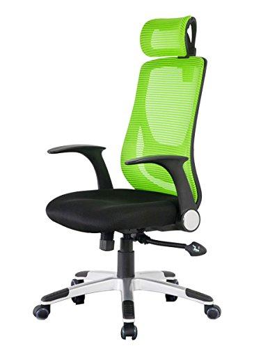 Merax Mesh Office Chair Ergonomic Design Desk Chair Technical Mesh Task Chair (Green)