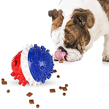 Best toys for smart dogs Reviews