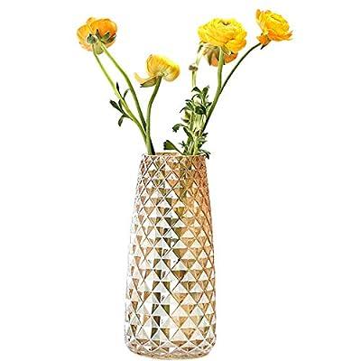 Fantastic Ryan Decorative Glass Vase Crystal Clear Modern Flower Decor Vase for Home Office Table Shelf (Amber Yellow)