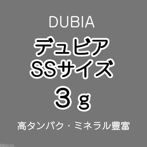 (生餌)デュビア(アルゼンチンモリゴキブリ) SSサイズ 3グラム(約60匹) 沖縄・離島不可 タイム便・航空便不可