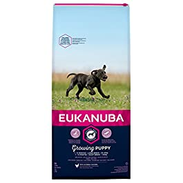 Eukanuba Puppy Dog Food for