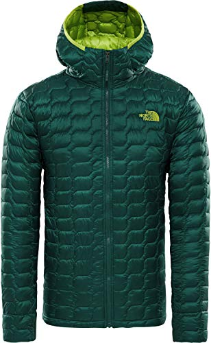 THE NORTH FACE Thermoball Pro Hoodie Men Größe M Botanical Garden Green