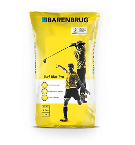 Barenbrug Turf Blue Pro Kentucky Bluegrass Grass Seed with Yellow Jacket Seed Coating - Drought Tolerant Seed for Use on Golf Courses, Sports Fields, Parks, Lawns, and Yards (25 LB Bag)
