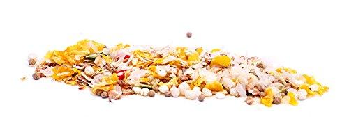 Spezial-Flocken-Mix, 10kg-Sack, Nahrungsergänzung als gesunde, natürliche Ernährung für Hunde von DIBO, Hundefutter, BARF, B.A.R.F.