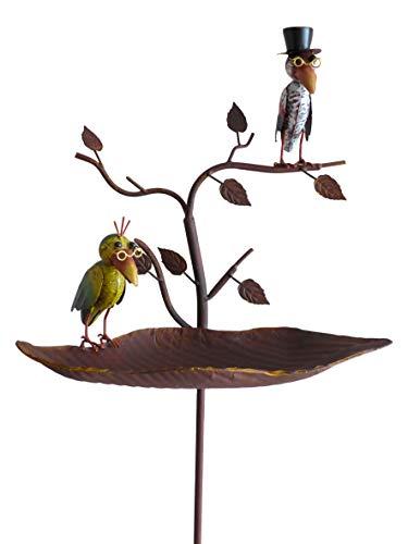 N / A Vogeltränke Vögel mit Brille Gartenstab Gartenstecker Gartendekoration Garten