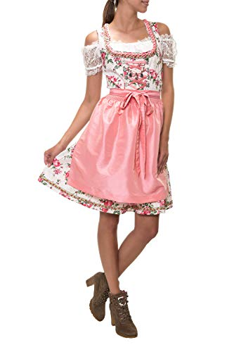 Hailys Damen Dirndl Trachtenmode Trachten Kleid Oktoberfest Wiesn (L, Rose)