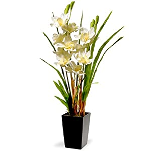 National Tree Company Artificial Silk Flowers Includes Pot Base, 31 Inch, White Orchid