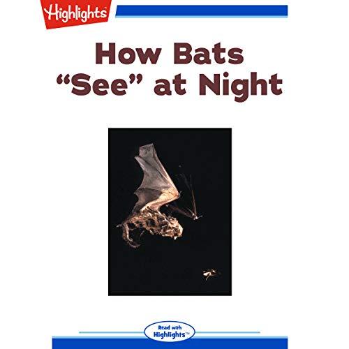 """How Bats """"See"""" at Night copertina"""
